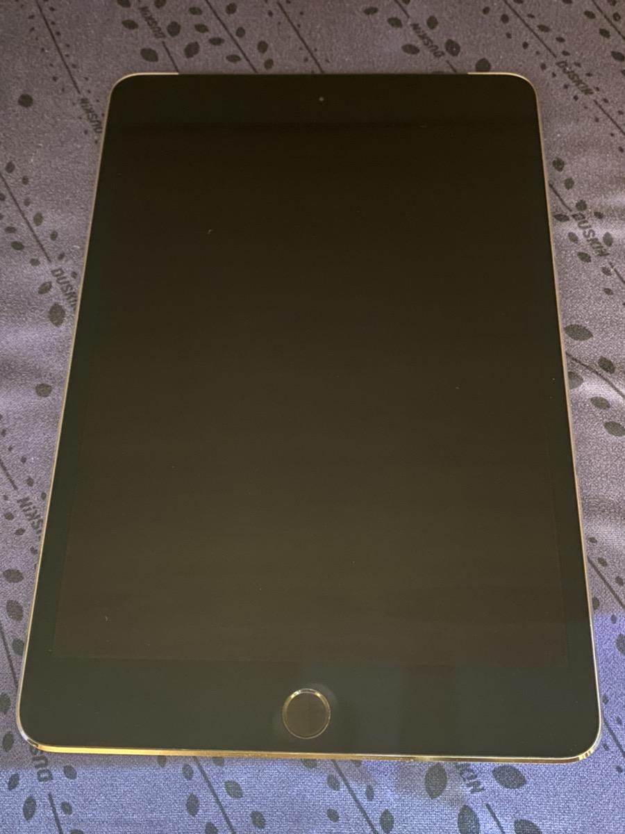 iPad mini4 128GB (中古)